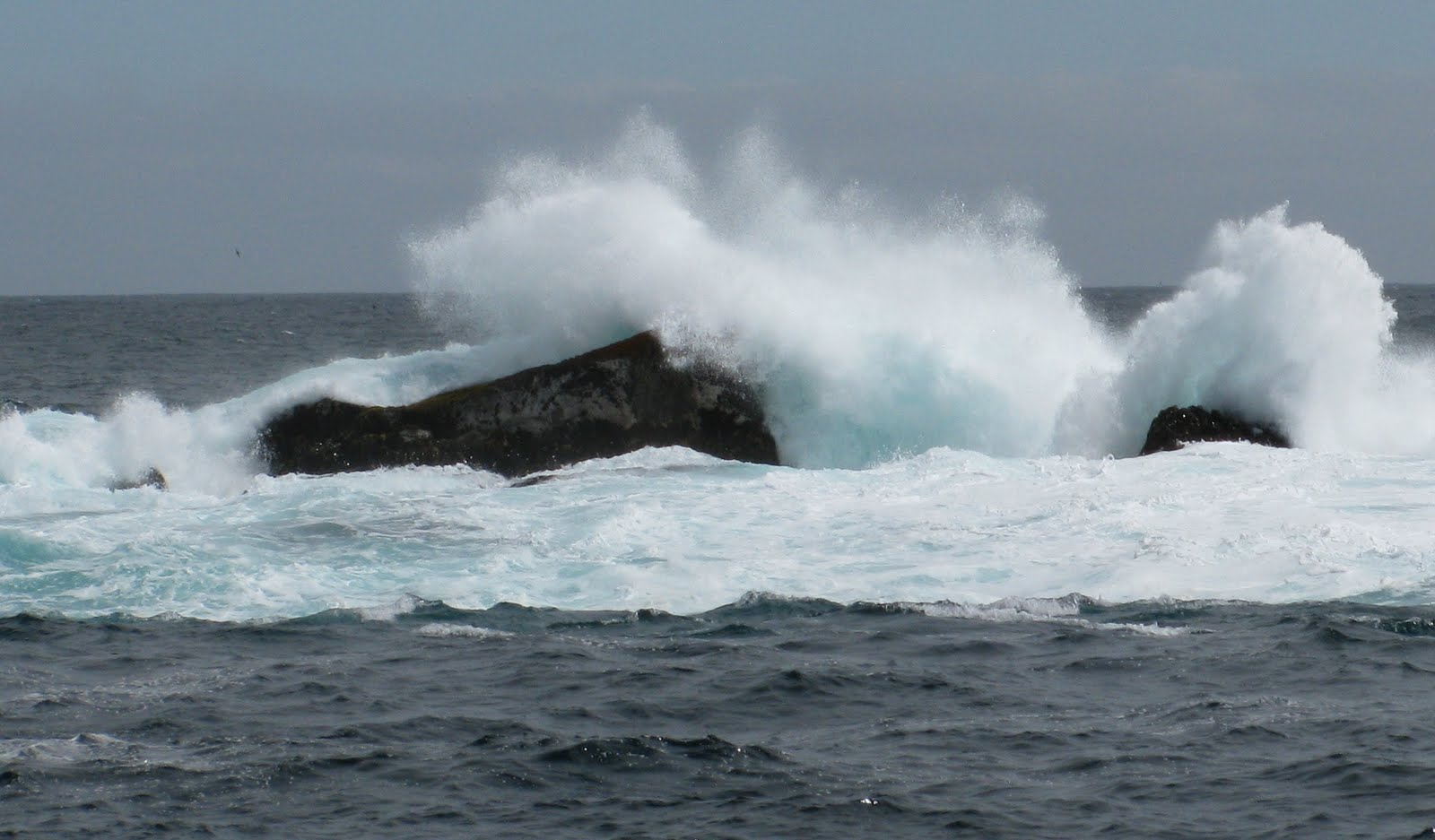 http://successiontoday.com/wp-content/uploads/2011/02/choppy-waters.jpg